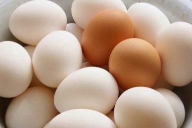 mơ thấy trứng đánh con gì